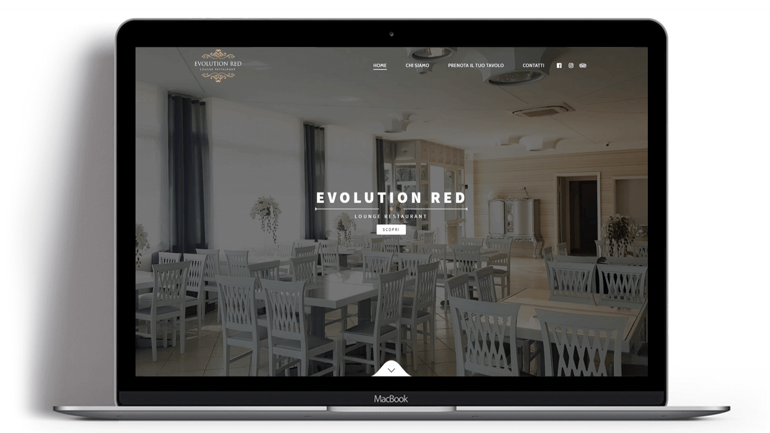 Syria Web Portfolio - Evolution Red