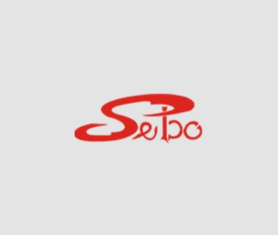 Sebo snc-Siti Web
