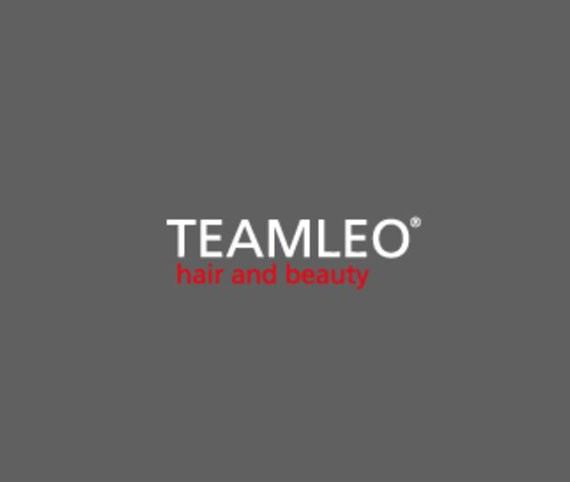 Team Leo-Siti Web