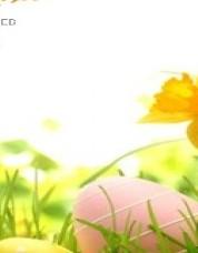 Buona Pasqua da Syria Web